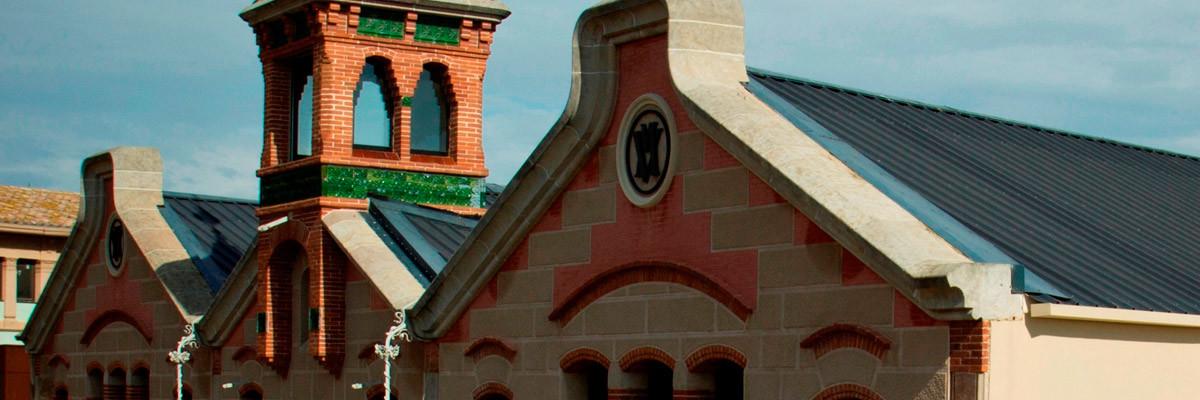 museu-del-suro-logo2